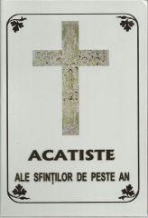 Acatiste ale Sfintilor de peste an (I)