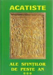 Acatiste ale Sfintilor de peste an (III)