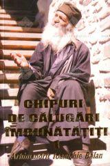 Arhimandrit Ioanichie Balan