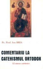 Parinte prof.dr. Ion Bria