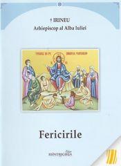 Irineu, Arhiep. al Alba Iuliei